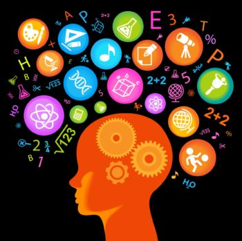 Neuroscience and Modern Languages teaching: what studies of the brain can tell us