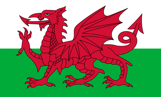 Focus on Wales