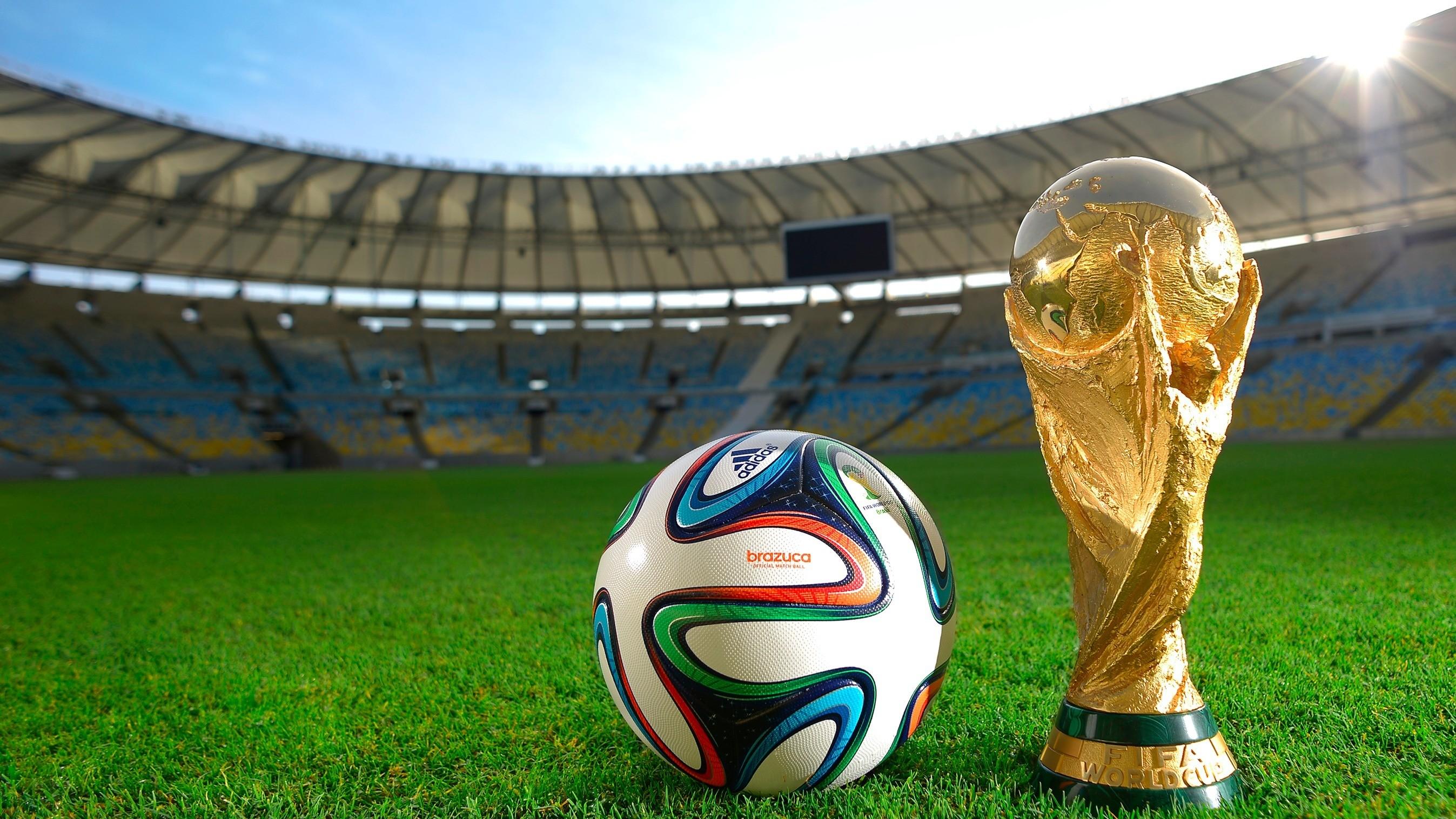 Fußball-Weltmeisterschaft 2018